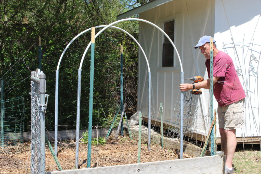 building and assembly of garden trellis in garden area with the contractor