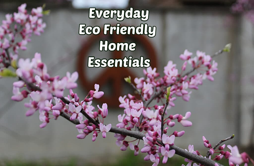 Peace sign hanging on a wall in the background with a blooming redbud in front with title everyday eco friendly home essentials