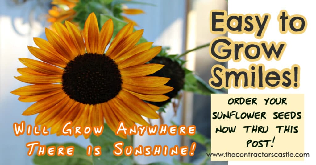 facebook easy to grow smiles post cover