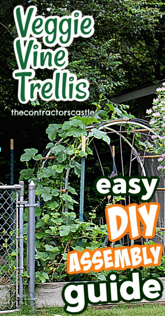 pinterest easy step by step DIY vine trellis