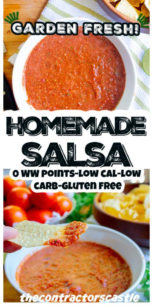 pinterest pin for salsa